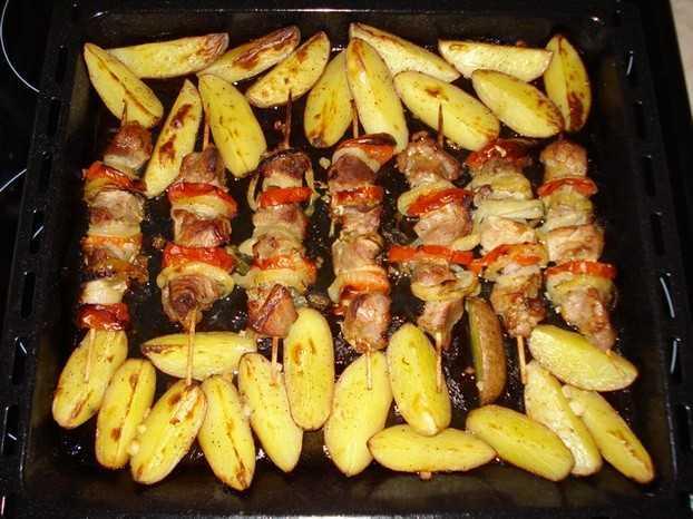 как приготовить куриный шашлык в духовке на протвине
