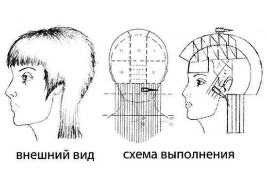 Схема стрижек гаврош