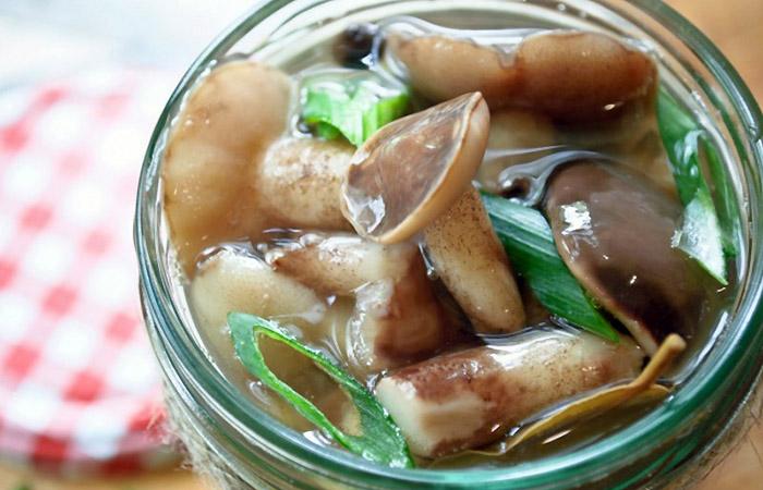 Рецепты маслят - как приготовить маслята на еду и в зиму
